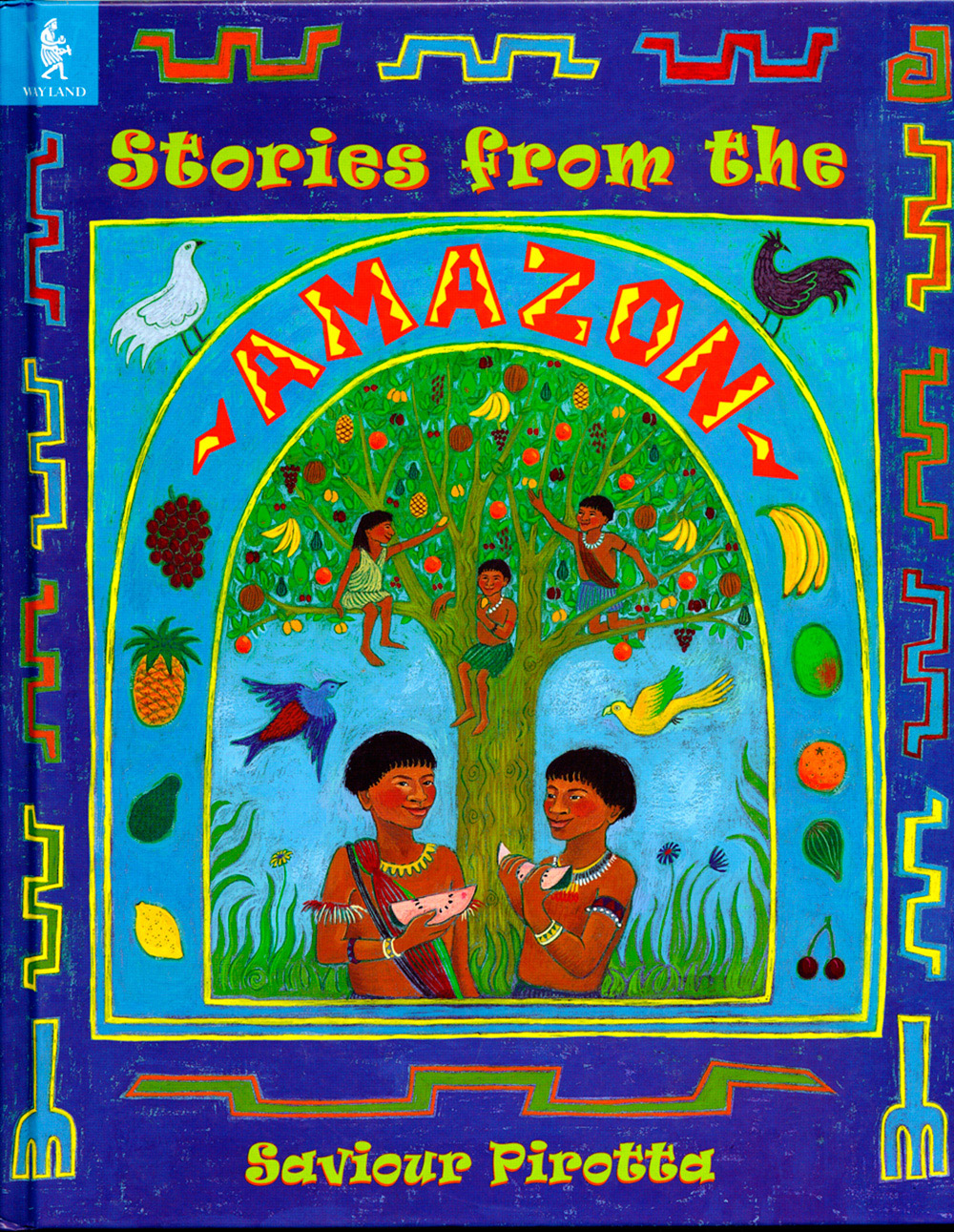 Stories from the Amazon book cover design