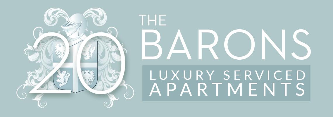 branding for 20 The Barons website